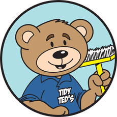 Niche Cartoons Mascot For Tidy Ted's Cleaning Company
